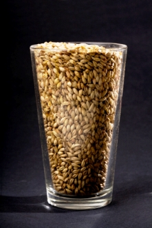 grain_in_glass_web